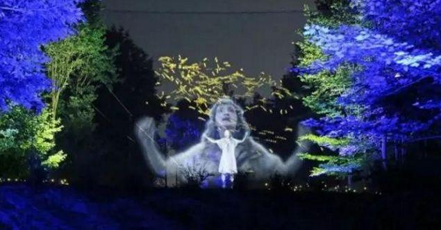 灯光与森林结合   恩施将诞生中国首家幻光森林换网器